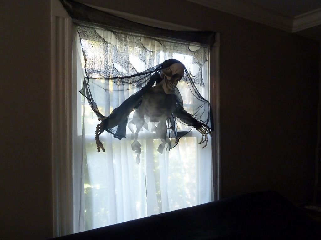 Decorate Your Windows With Creepy Items