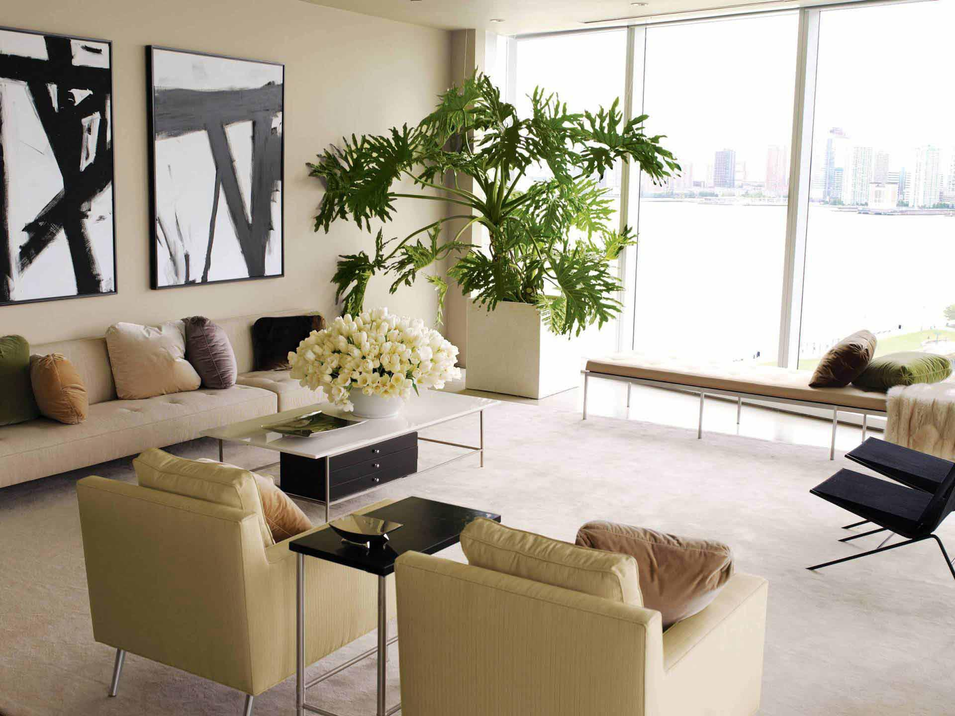 Decorating our homes with plants interior design explained living room plants geotapseo Gallery