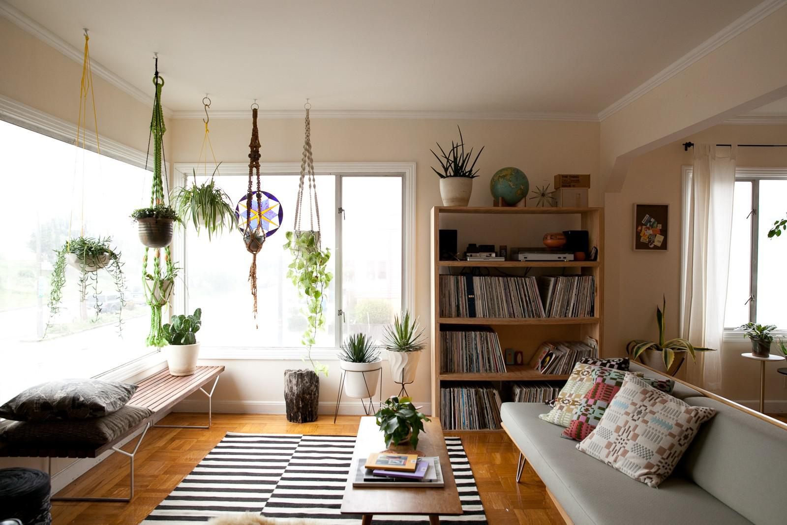 Decorating our homes with plants interior design explained Large living room plants