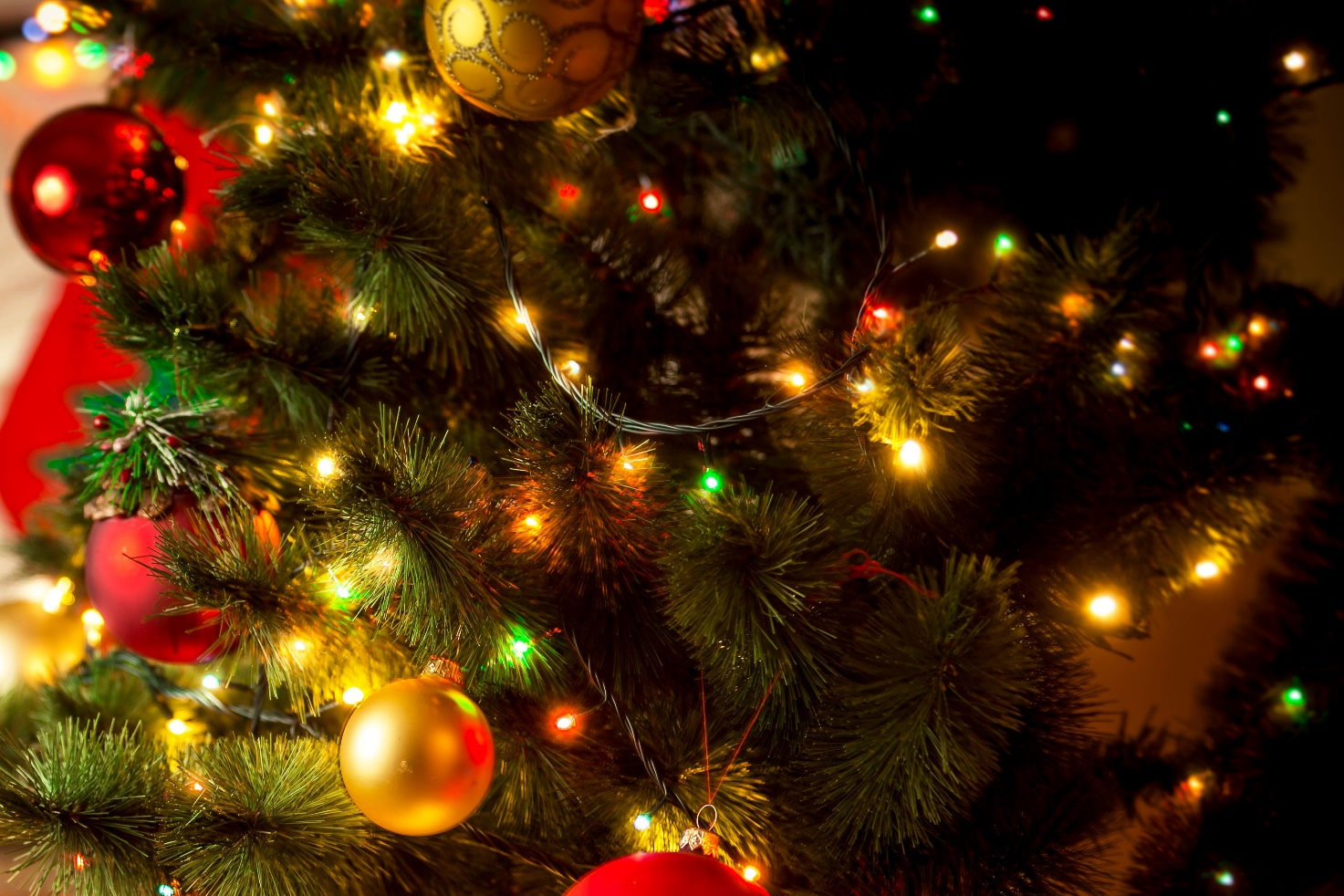 Christmas lights to make your home shine bright this holiday season
