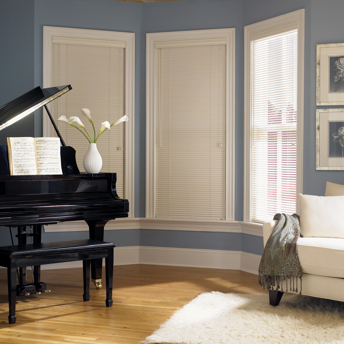 Wooden blinds with white window trim